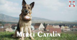 catelin
